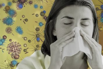Flu Review—a brief history and analysis of influenza risk