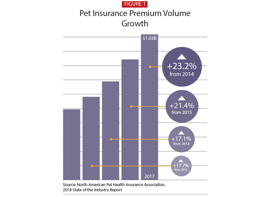 Pet Insurance Companies >> A Policy For Fluffy Pet Insurance Is A Small Industry But