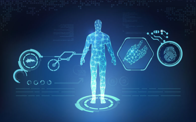 Clinical Laboratory and Biometrics Measures Used to Assess Risk