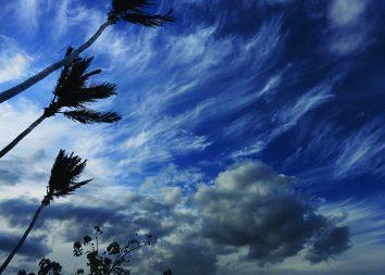 Hurricane Season No. 39